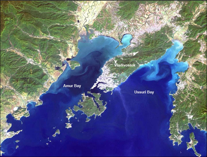 Amur Bay polluted
