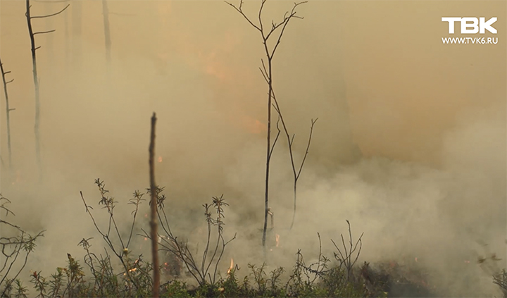 Wildfires in Krasnoyarsk region