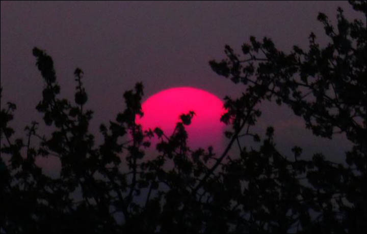 Smoke from Siberian fires causes dramatic sunsets in North America