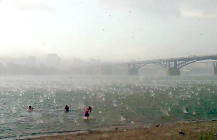 Novosibirsk hail storm people in water