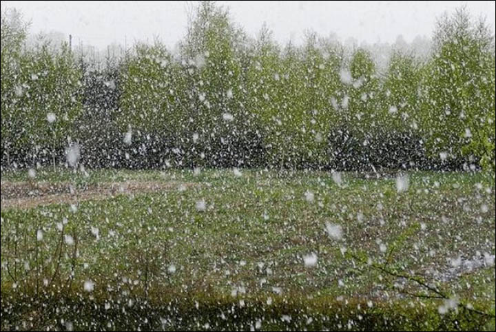 Snow falls in Chelyabinsk region