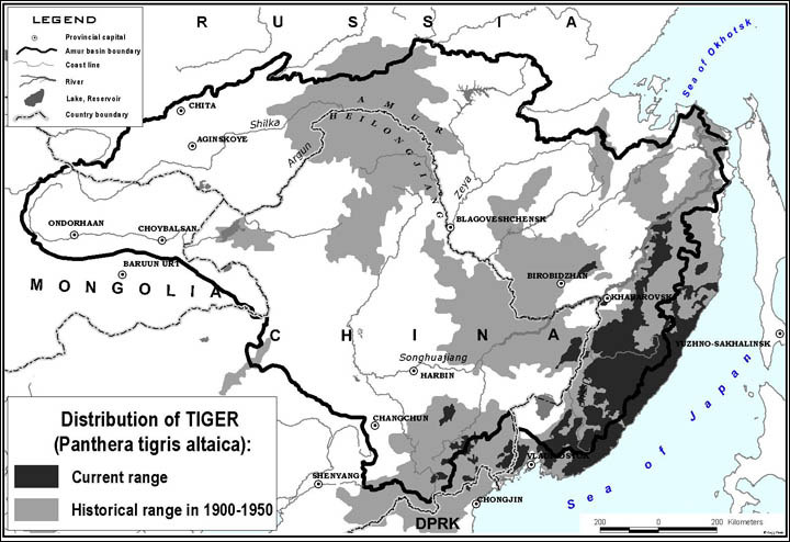 Siberian tiger in North America? | Page 6 | SpaceBattles Forums