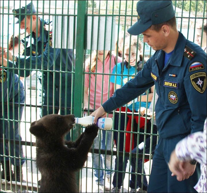 Rescuers meet the bear