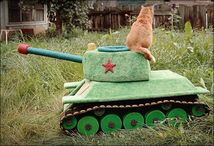 Cat drives its own tank in Siberia