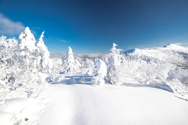 Enchanting winter scenes from Russia's largest island - Sakhalin