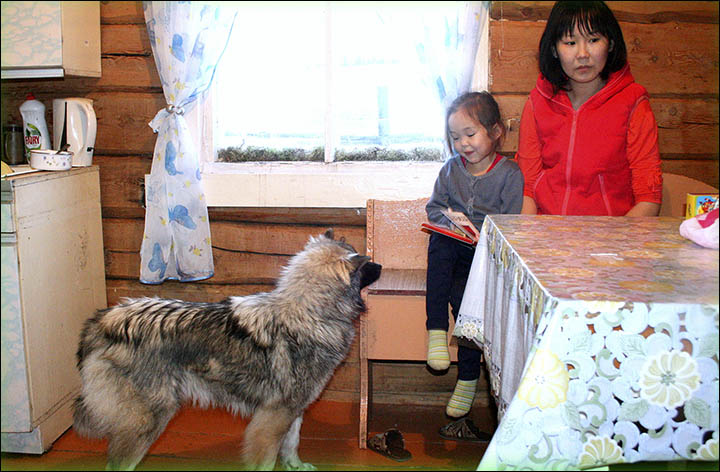 Girl lost for 12 days in Siberian wilderness looks forward to Xmas with dog that saved her