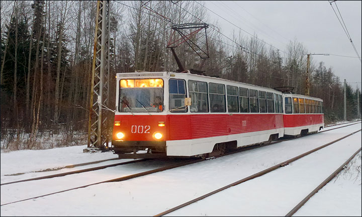 Siberian tram goes through taiga