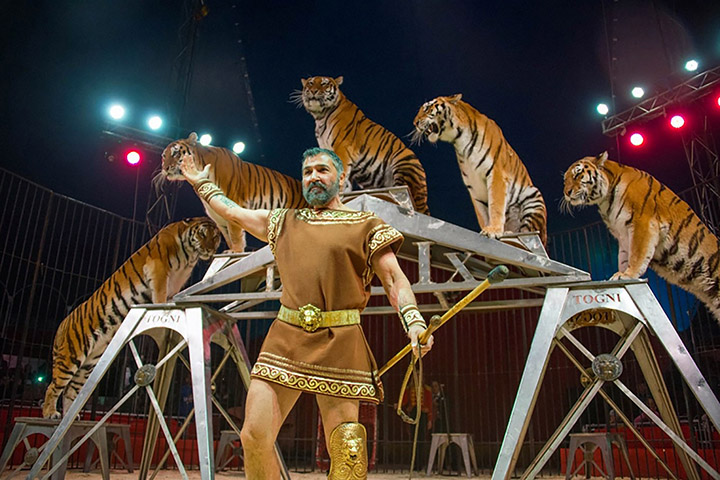 Is this the world's longest and most gruelling travelling circus journey?