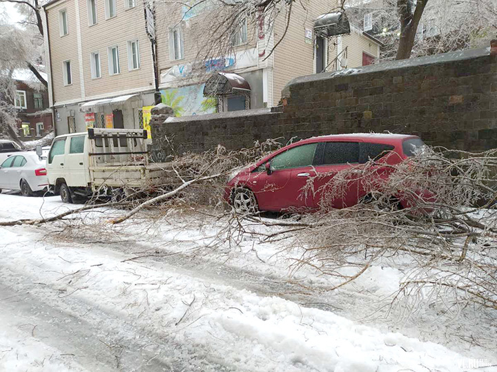 State of emergency in Russian Far East as ice rain causes collapse of key systems