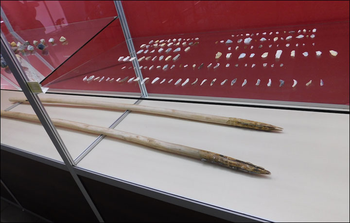 Mammoth spear from Kostenki