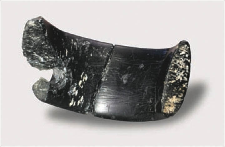 40,000-year-old bracelet made by extinct human species found