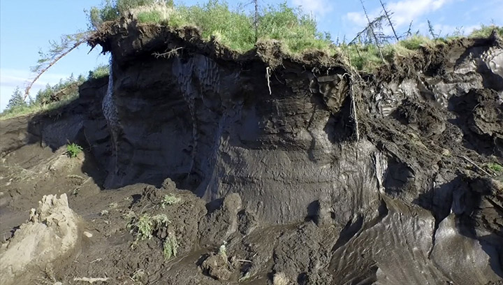 Permafrost layer at Duvanny Yar