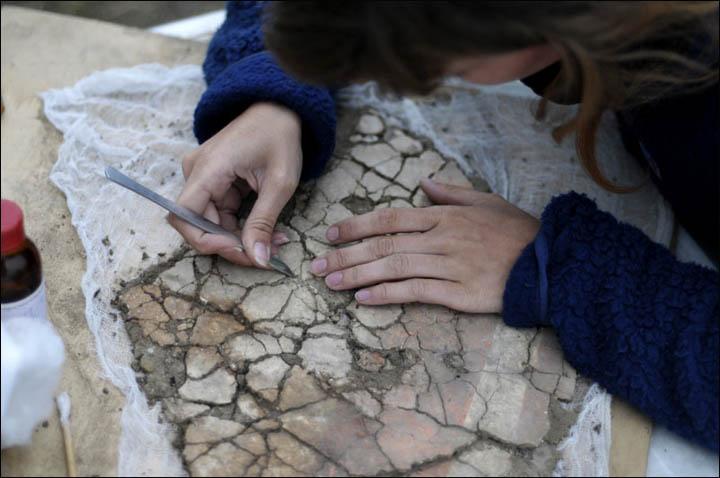 Restoration on Por-Bajin