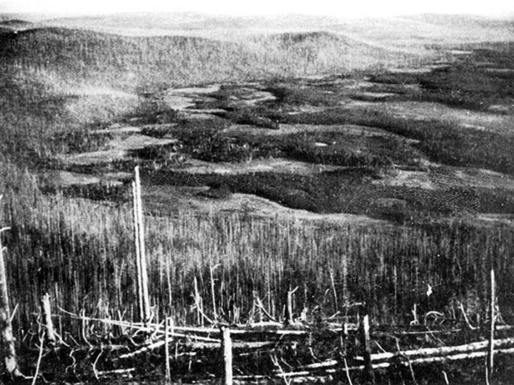 Tunguska event was caused by an iron asteroid body, which passed through the Earth's atmosphere and continued to the near-solar orbit