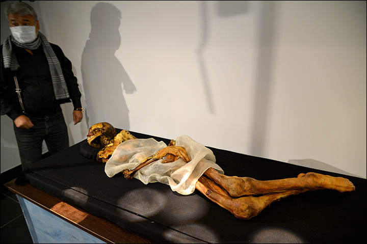 Ukok mummy MRI scan