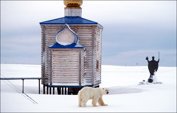 Merry Christmas From Siberia To All Our Readers Around The World
