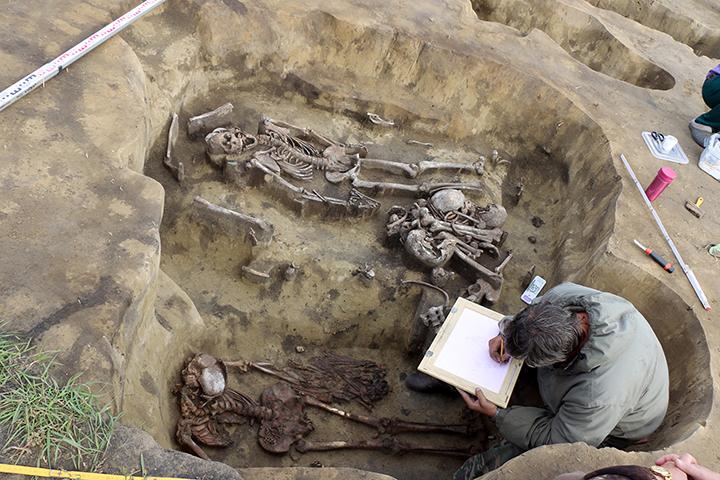 Исследование останков