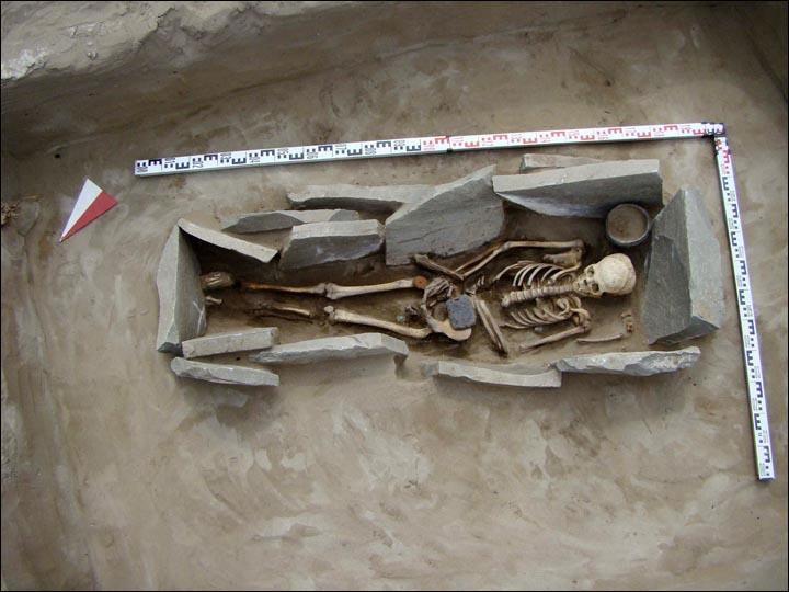 Coal buckle in situ