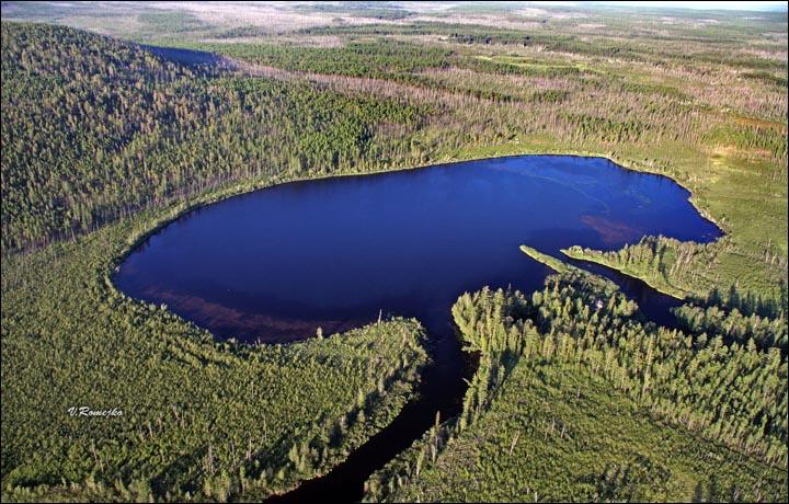 Risultati immagini per Tunguska meteor